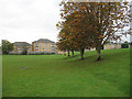 TQ2790 : Muswell Hill Sports Ground by Martin Addison
