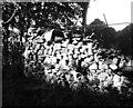 NT5239 : Dyke, Mosshouses by Richard Webb