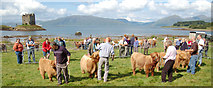 NM9247 : The Appin Show by Donald MacDonald