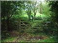 SD2184 : Gate by Alexander P Kapp