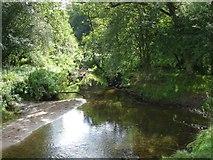 SJ6575 : Anderton Nature Park - Lesley's Leap by Mike Harris