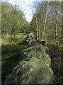 SK3062 : Boundary of Farley Moor and Matlock Moor by Nikki Mahadevan