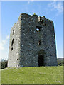 J0514 : Moyry Castle by Ron Murray