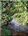 SJ6652 : Weir on Cheney Brook by Espresso Addict