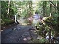 NZ0560 : Bat House Road Ford by Tim Fish