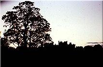 NZ1221 : Raby Castle estate by Stanley Howe