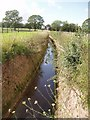 NY9876 : Water course from Hallington Reservoir by Tim Fish