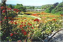 NJ9304 : Rose Garden from the top of the Rose Hill by Colin Smith