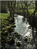 SE0328 : Luddenden Brook by Phil Champion