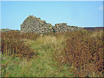 NY1701 : Boot: ruined hut at Boot Bank by Mike Harris