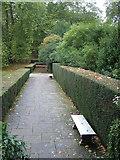 SX7962 : Benches in autumn by Derek Harper