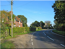 SU1012 : The road from Cranborne to Alderholt Dorset by Clive Perrin