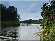 TG2608 : The River Yare, Norfolk by Bob Crook