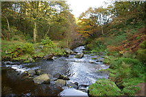 SD9628 : Colden Water at Hebble Hole by Phil Champion