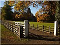 NZ0162 : Styford Hall, Driveway and Stables by Bill Cresswell