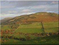 NT8127 : Staerough Hill by Hill Walker