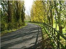 SK6443 : Stoke Lane, Burton Joyce by Stephen McKay