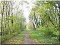 SH5065 : View West along the old LMS trackbed by Eric Jones