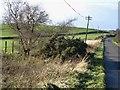 NZ0054 : Drunken telegraph pole, Hairy Side by Oliver Dixon