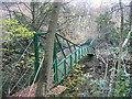 NZ4138 : Gunners Pool Bridge, Castle Eden Dene by Les Hull