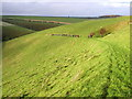 SE8659 : West Dale Wolds Way Walkers by Andy Beecroft