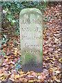 TL8261 : Adkins Wood by Keith Evans
