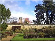 SP5206 : Magdalen Tower from the Botanic Garden by ceridwen