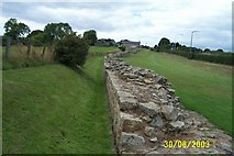 NZ1366 : Hadrian's Wall by mike hancock
