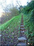 TQ4210 : Steps to Undercliff House by Simon Carey