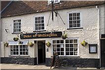 SY9287 : The Duke of Wellington, Wareham by John Lamper