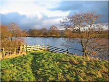 SD6074 : River Lune by Ian Taylor