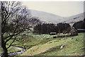 NT9320 : Langleeford Hope farm by Roger Cornfoot