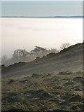 NT2466 : Hillend Hill by Callum Black