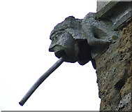 TA0816 : Gargoyle on Wootton Church by David Wright