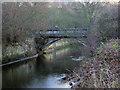 NZ2782 : Furnace Bridge by george hurrell