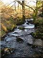 SX5481 : Baggator Brook from footbridge by Derek Harper