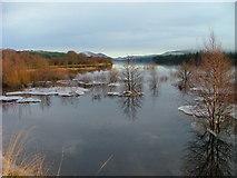 NN4886 : Ice on Loch Laggan by Dave Fergusson
