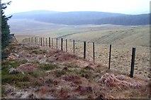 NO0407 : Upper Valley of Warroch East Burn by Alfred Fyfe
