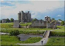 N8056 : Castle In Trim, County Meath by Billy Irwin