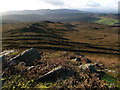 NU0604 : View southwest from Bieldy Pike by Derek Harper