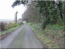 TR3153 : Lane at Western edge of Sangrado's Wood. by Nick Smith