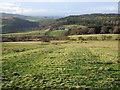 NU0900 : Looking towards Cragend from near Healey by Derek Harper
