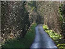 SU4955 : The lane above Ashley Warren by Andrew Smith