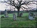 NN8850 : Lundin Stone Circle by Lisa Jarvis