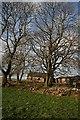 NJ4155 : Whitestones by Anne Burgess