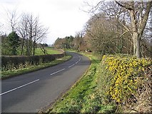 NU0440 : The B6353 near Kyloe Cottage by Walter Baxter
