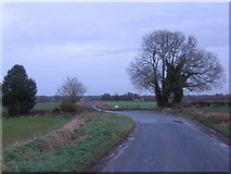 ST7981 : Old Down Road by Phil Williams