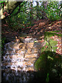 TQ5329 : Small Waterfall, Stableford, Mount Pleasant by Simon Carey