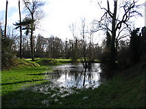 SP2772 : Pond by Kenilworth Castle by E Gammie