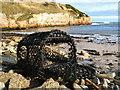 NU0054 : Beach at Sharper's Head, North of Berwick by Lisa Jarvis